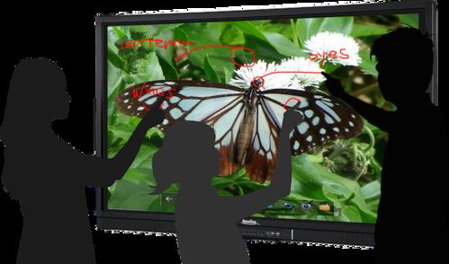 "NEWLINE IB DISPLAY INTERACTIVO LED/LCD 65"" 10 TOUCH EDU + OPS CORE i3 + SOFTWARE OCTOPUS"